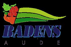 Logo de la mairie de badens representant la flamme et le département