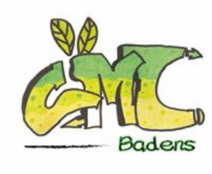 Logo du conseil municipal des jeunes de badens